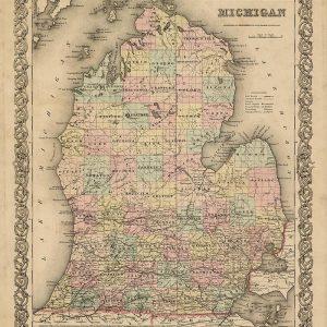 Map of Michigan 1855 Print