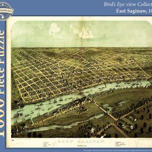 East Saginaw, 1867 Puzzle