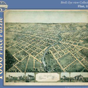 Flint, 1867 Puzzle