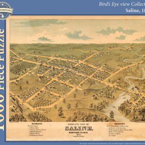 Saline, 1872 Puzzle