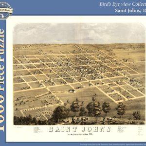 St. Johns, 1868 Puzzle
